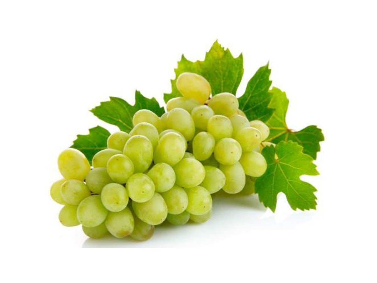 Table grapes loucofruit for Table grapes